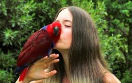 Women kissing a parrot