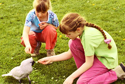 two girls feeding a parrot
